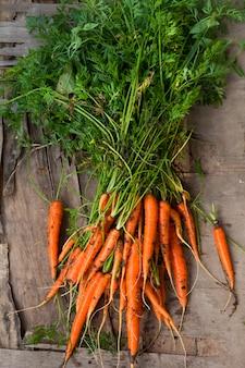 Fazenda fresca cenoura orgânica colheita fundo de madeira