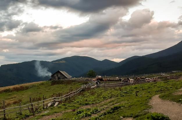 Fazenda isolada no topo de uma montanha com vacas pastando no curral contra o céu noturno