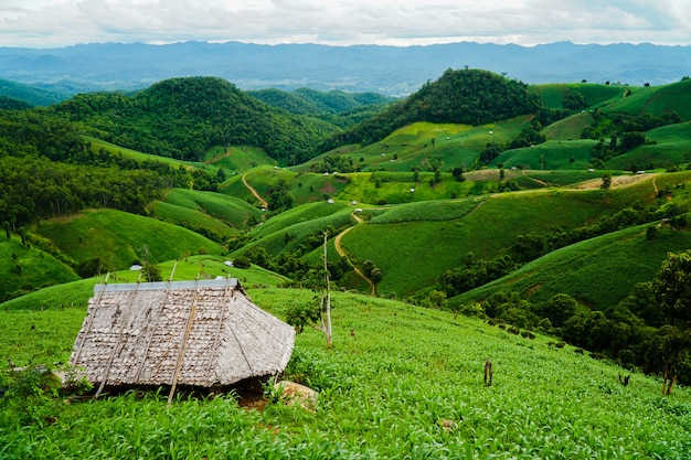 Fazenda nas colinas