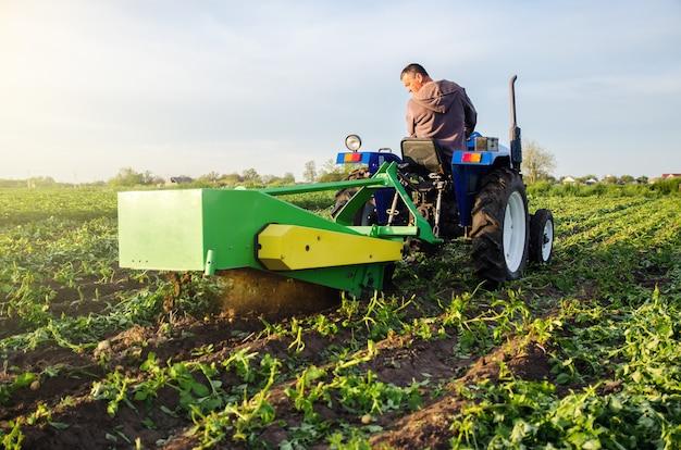 Fazendeiro colhe uma safra de batatas com um escavador colhe as primeiras batatas no início da primavera agricultura