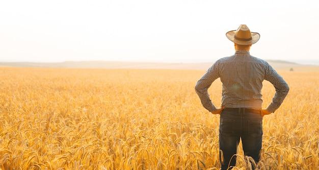 Fazendeiro com chapéu na cabeça no campo de trigo olhando o pôr do sol