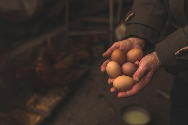 Fazendeiro com ovos