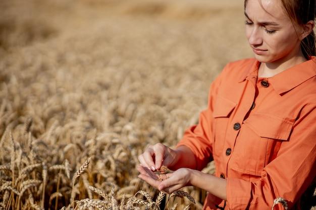 Fazendeiro com tablet e tubo de ensaio pesquisando planta no campo de trigo