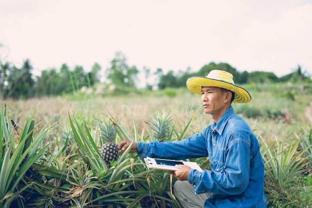 Fazendeiro do homem de negócios que guarda a tabuleta que está no campo do abacaxi. conceito de agricultor inteligente.