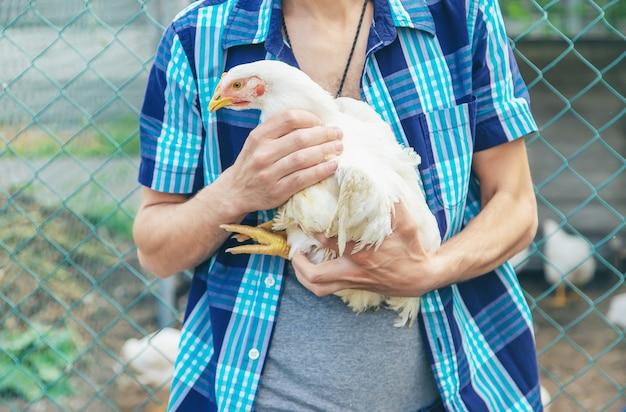 Fazendeiro do homem que guarda uma galinha em suas mãos.