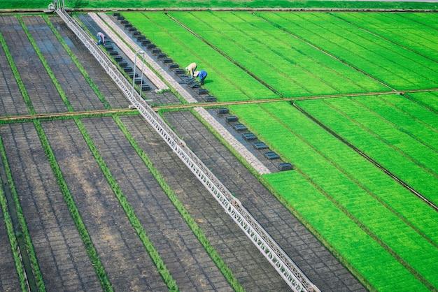 Fazendeiro está trabalhando na fazenda - filtro vintage Foto Premium