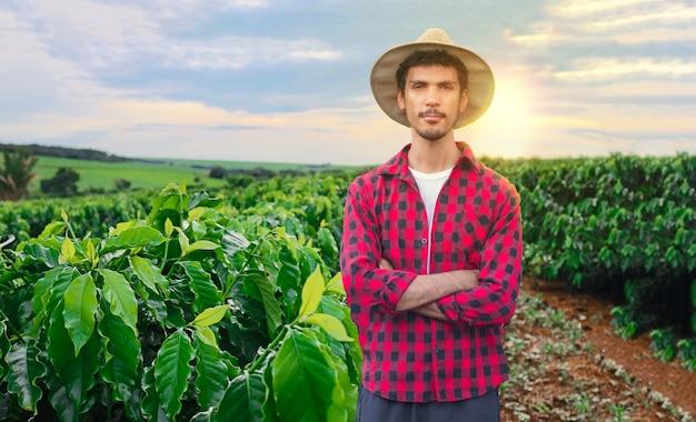 Fazendeiro ou trabalhando com chapéu no campo de café ao pôr do sol em dia nublado