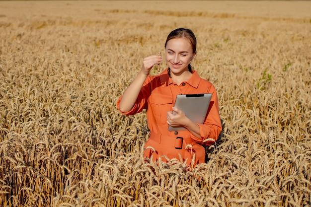 Fazendeiro pesquisando planta em campo de trigo
