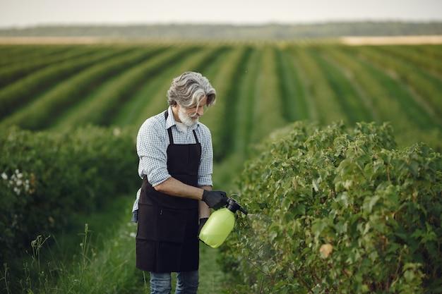 Fazendeiro pulverizando vegetais no jardim com herbicidas. homem de avental preto.