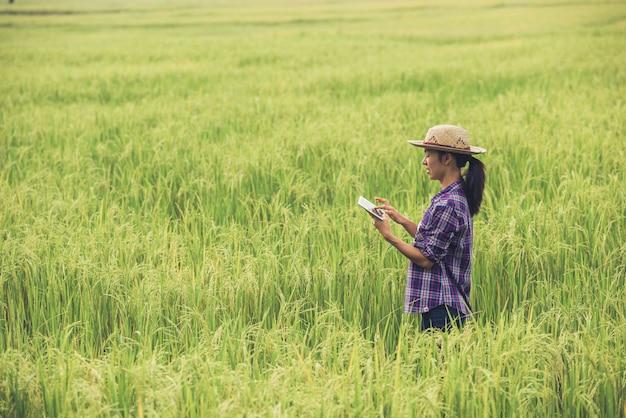 Fazendeiro que está em um campo do arroz com uma tabuleta.