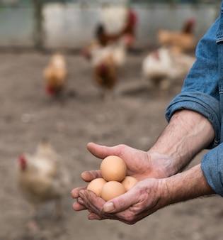 Fazendeiro segurando ovos orgânicos frescos