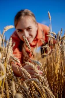 Fazendeiro verificando o progresso do campo de trigo. inspetor agrônomo que examina plantação de trigo
