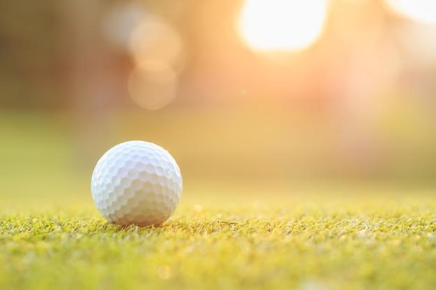 Fechar a bola de golfe na grama verde em curso