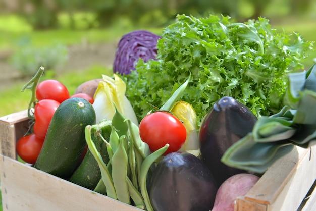 Fechar em legumes frescos e coloridos em uma caixa ao ar livre