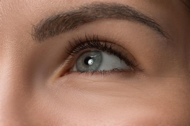Fechar os olhos cinzentos no rosto de uma jovem e linda garota caucasiana