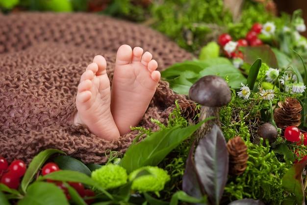 Feche a foto dos pés do bebê recém-nascido em uma manta de malha e flores, frutas vermelhas, cogumelos