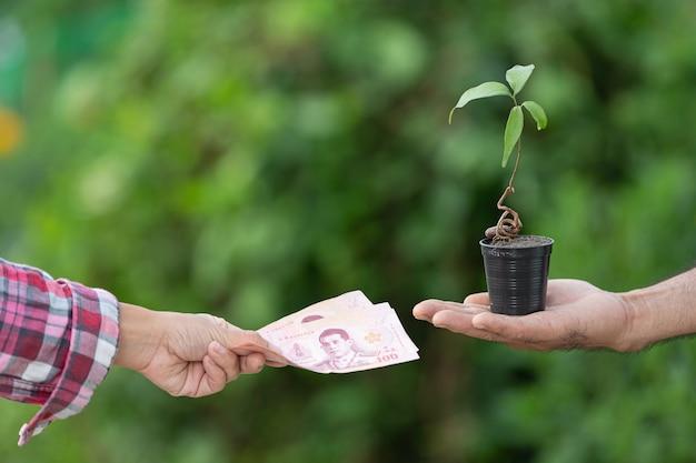 Feche a imagem de troca de dinheiro com plantas entre o cliente e o vendedor