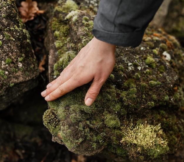 Feche a mão tocando o musgo