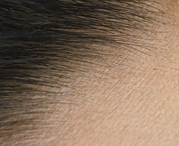 Feche a pele da testa e cabelo