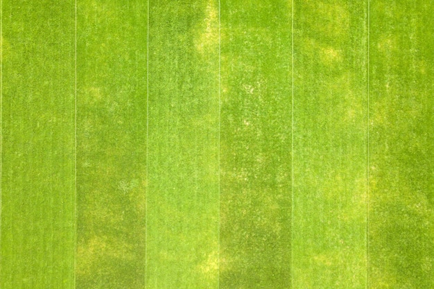 Feche a vista aérea da superfície da grama verde recém-cortada no estádio de futebol no verão.