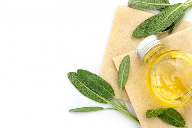 Feche acima da folha verde fresco da erva prudente com uma garrafa do óleo essencial no fundo branco, essência da erva