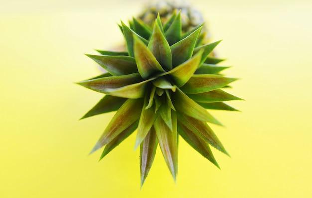 Feche acima da fruta fresca do verão do abacaxi no fundo amarelo