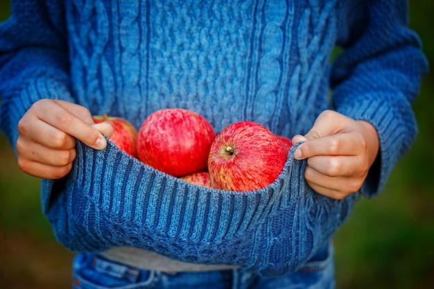 Feche acima da maçã vermelha nas mãos das crianças no dia do outono