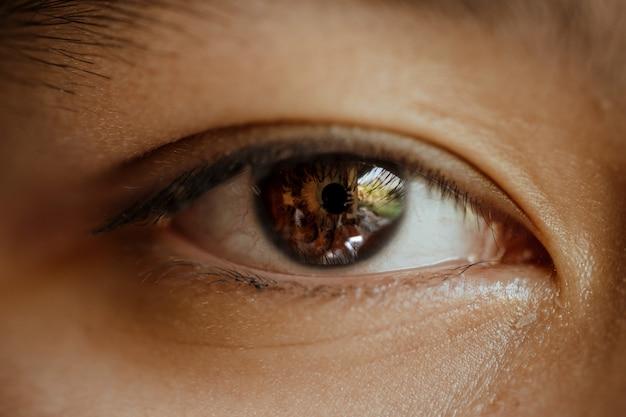 Feche acima da macro dos olhos
