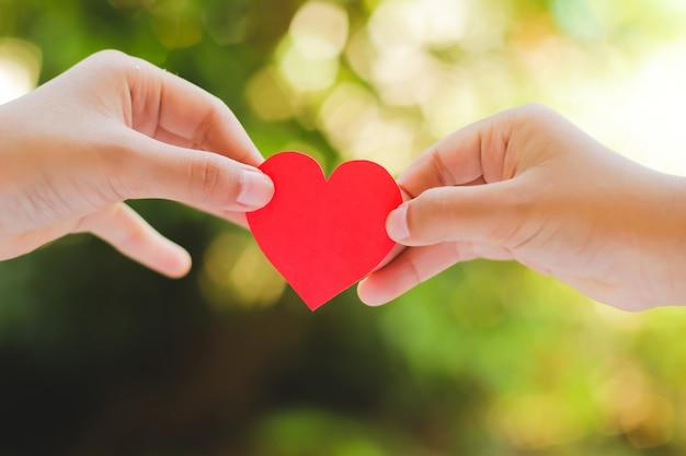 Feche acima da mão das crianças que guardam o mini coração no fundo verde.
