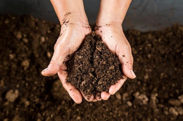 Feche acima da mão segurando musgo de turfa de solo