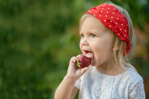 Feche acima da menina que come a morango madura na natureza. criança gosta de uma deliciosa baga. copie o espaço. conceito de comida saudável.