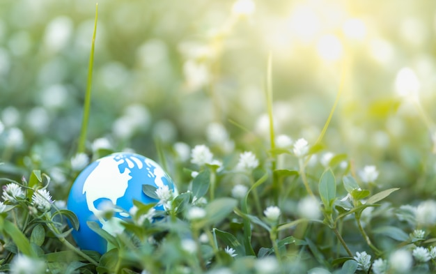 Feche acima da mini bola do mundo com a folha verde da natureza no fundo borrado das hortaliças sob a luz solar com espaço do bokeh e da cópia usando como a paisagem natural das plantas do fundo