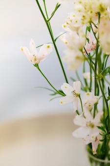 Feche acima da mini flor cor-de-rosa branca.