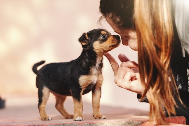 Feche acima da mulher caucasiano nova que petting o cachorrinho bonito pequeno ao ar livre no dia ensolarado.