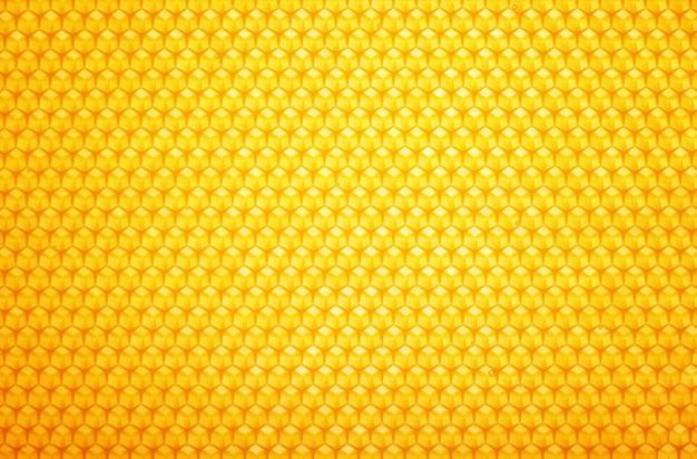 Feche acima da textura de fundo de mel em favo de ouro fresco, padrão de favo de mel de quadro completo