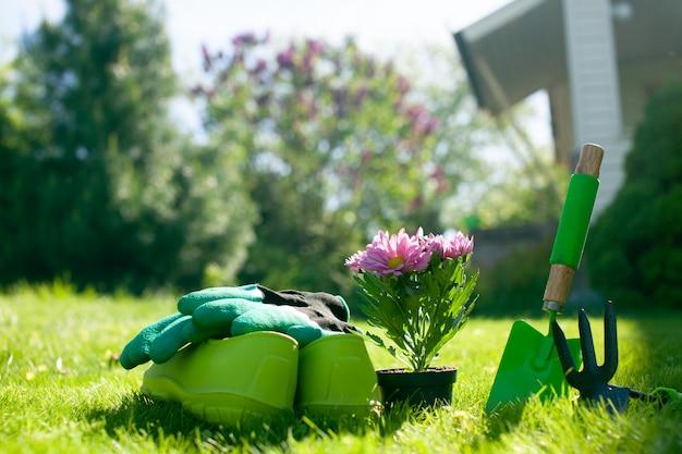Feche acima das ferramentas de jardinagem no gramado da grama verde.