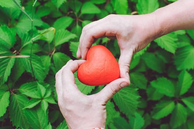 Feche acima das mãos do homem que guardam o coração vermelho.