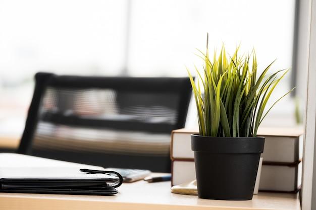 Feche acima das plantas da casa no potenciômetro, na caixa e nos originais de flor na mesa de escritório.