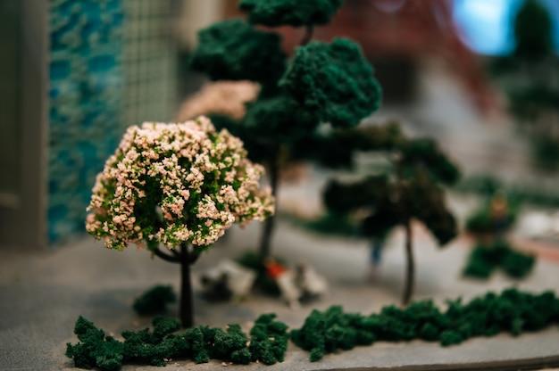 Feche acima de uma árvore pequena com as flores no parque.