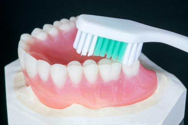 Feche acima, dentadura completa ou dentadura completa no fundo preto.