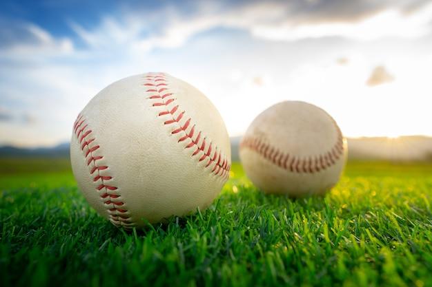 Feche acima do basebol no fundo da grama verde no por do sol.