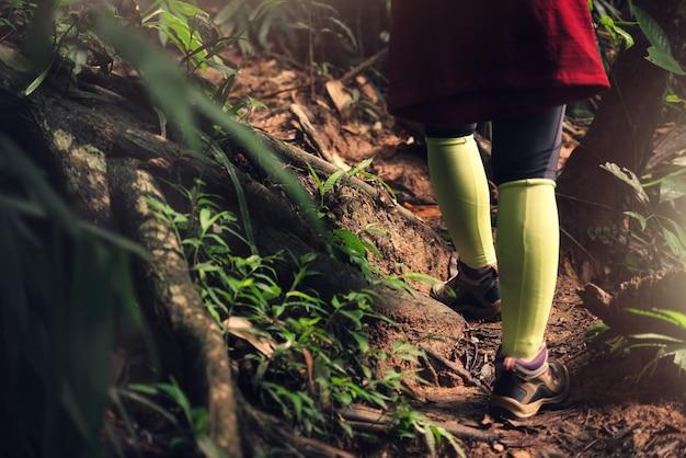 Feche acima do caminhante asiático da mulher está caminhando na floresta em férias