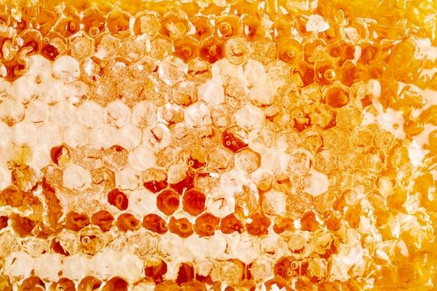 Feche acima do favo de mel dourado