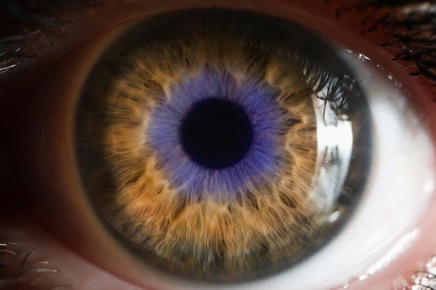 Feche acima do tiro de um olho humano