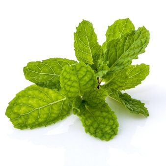 Feche acima dos leavs verdes da hortelã com o isolado da gota da água no fundo branco.