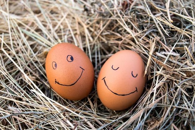 Feche acima dos ovos com as caras engraçadas desenhadas na palha.