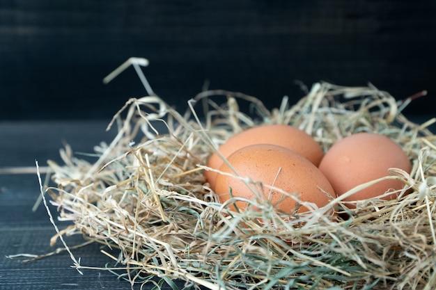 Feche acima dos ovos marrons frescos da galinha no ninho do feno no fundo de madeira preto.