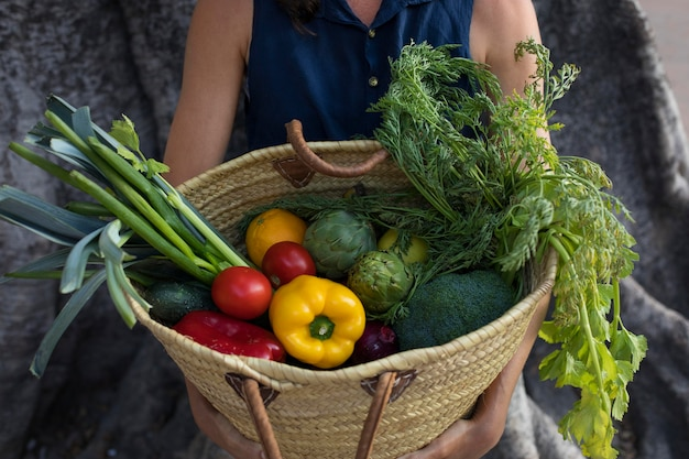 Feche as mãos carregando uma cesta com vegetais