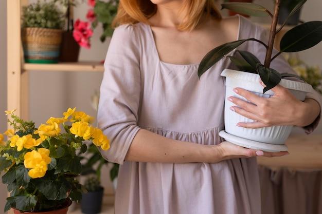 Feche as mãos segurando um vaso de flores