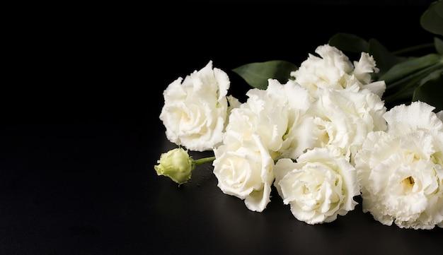 Feche flores lindas e delicadas